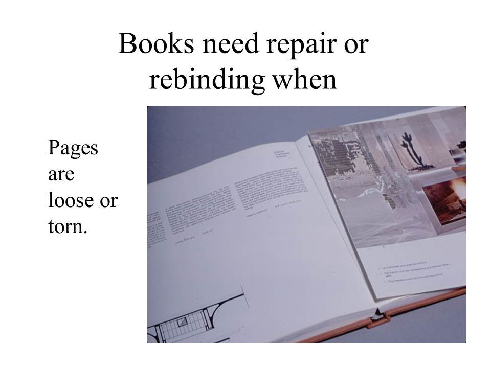 Books need repair or rebinding when Pages are loose or torn.