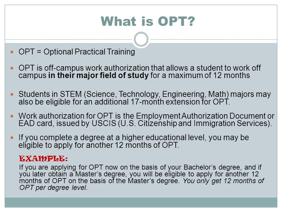 What is OPT.