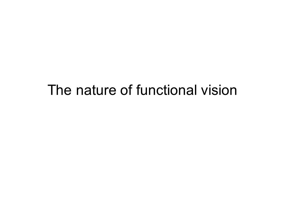 The nature of functional vision