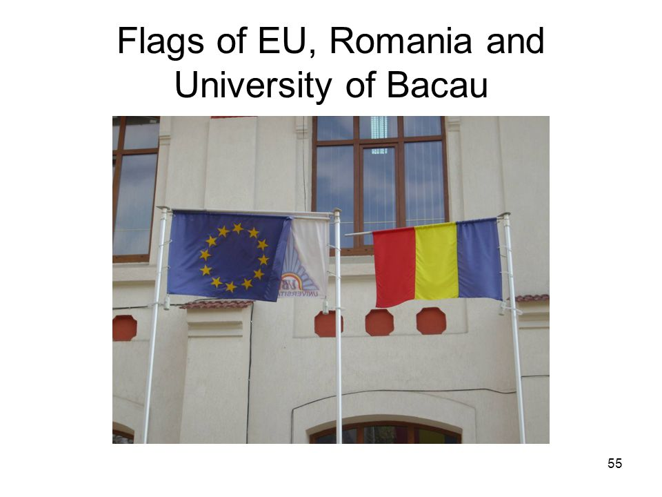 55 Flags of EU, Romania and University of Bacau