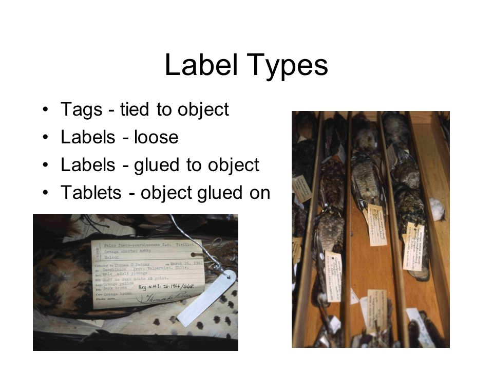Label Types Tags - tied to object Labels - loose Labels - glued to object Tablets - object glued on
