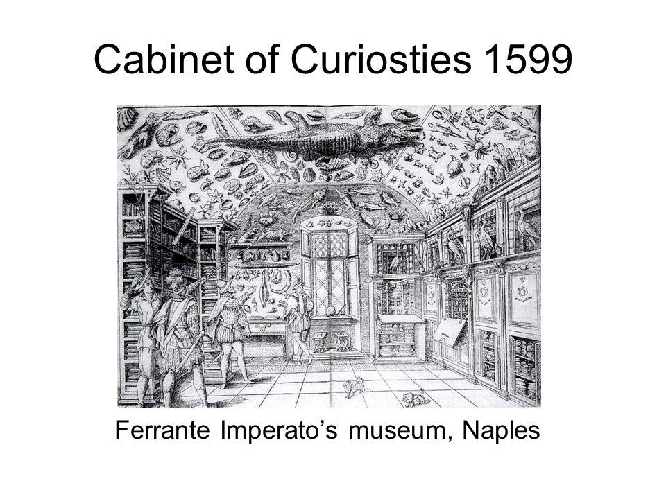 Cabinet of Curiosties 1599 Ferrante Imperato's museum, Naples