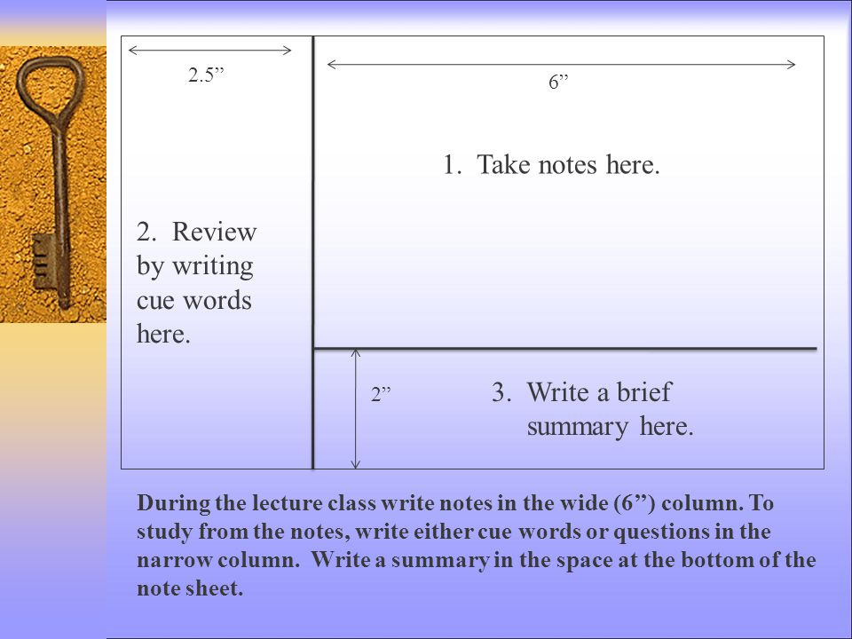 """2.5"""" 6"""" 2"""" During the lecture class write notes in the wide (6'') column. To study from the notes, write either cue words or questions in the narrow c"""