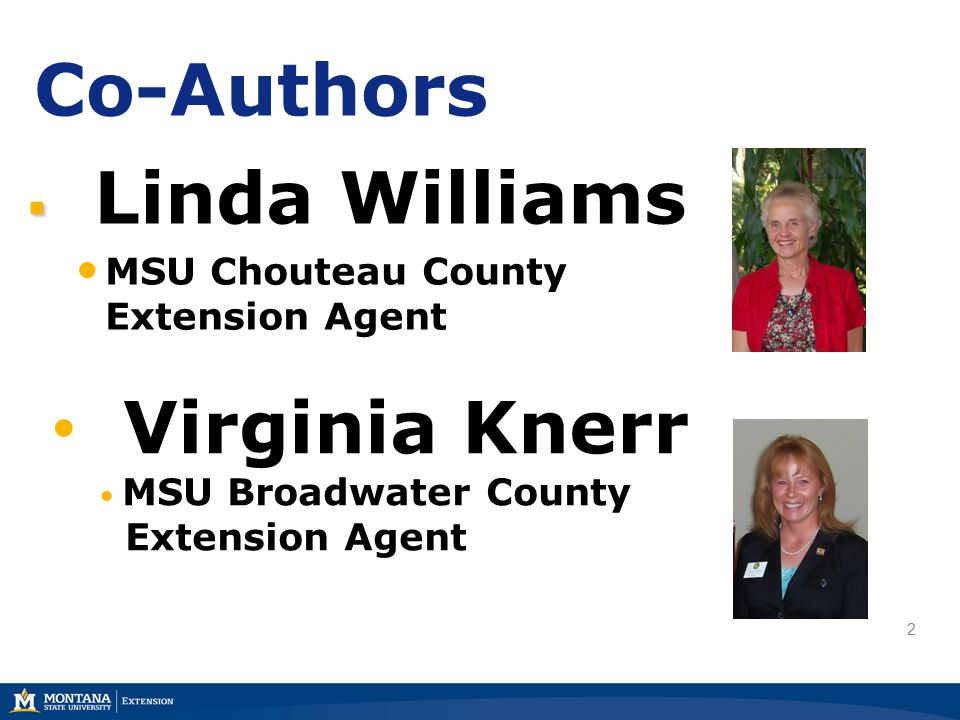 3 Co-Authors  Marsha Goetting MSU Extension Family Economics Specialist PowerPoint Developer  Keri Hayes MSU Extension Publications Assistant