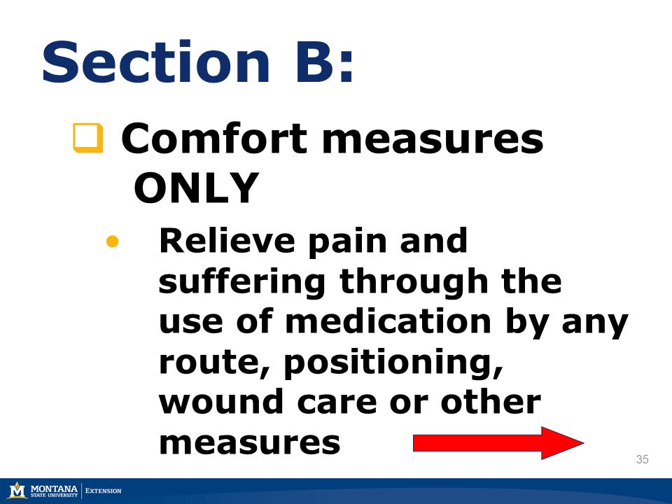 35 Section B:  Comfort measures ONLY Relieve pain and suffering through the use of medication by any route, positioning, wound care or other measures