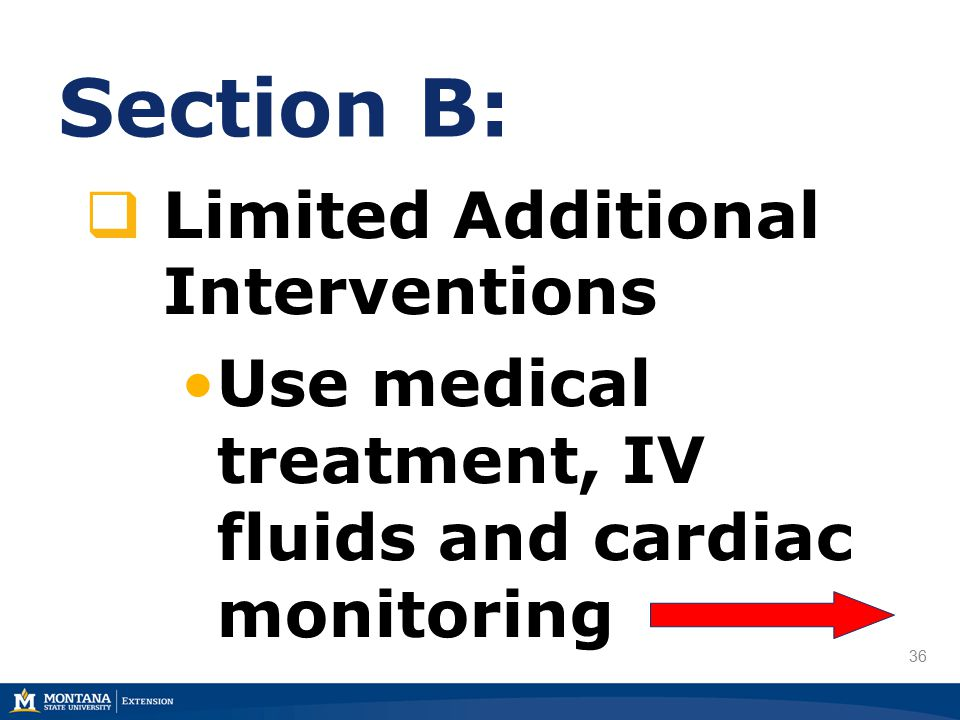 36 Section B:  Limited Additional Interventions Use medical treatment, IV fluids and cardiac monitoring