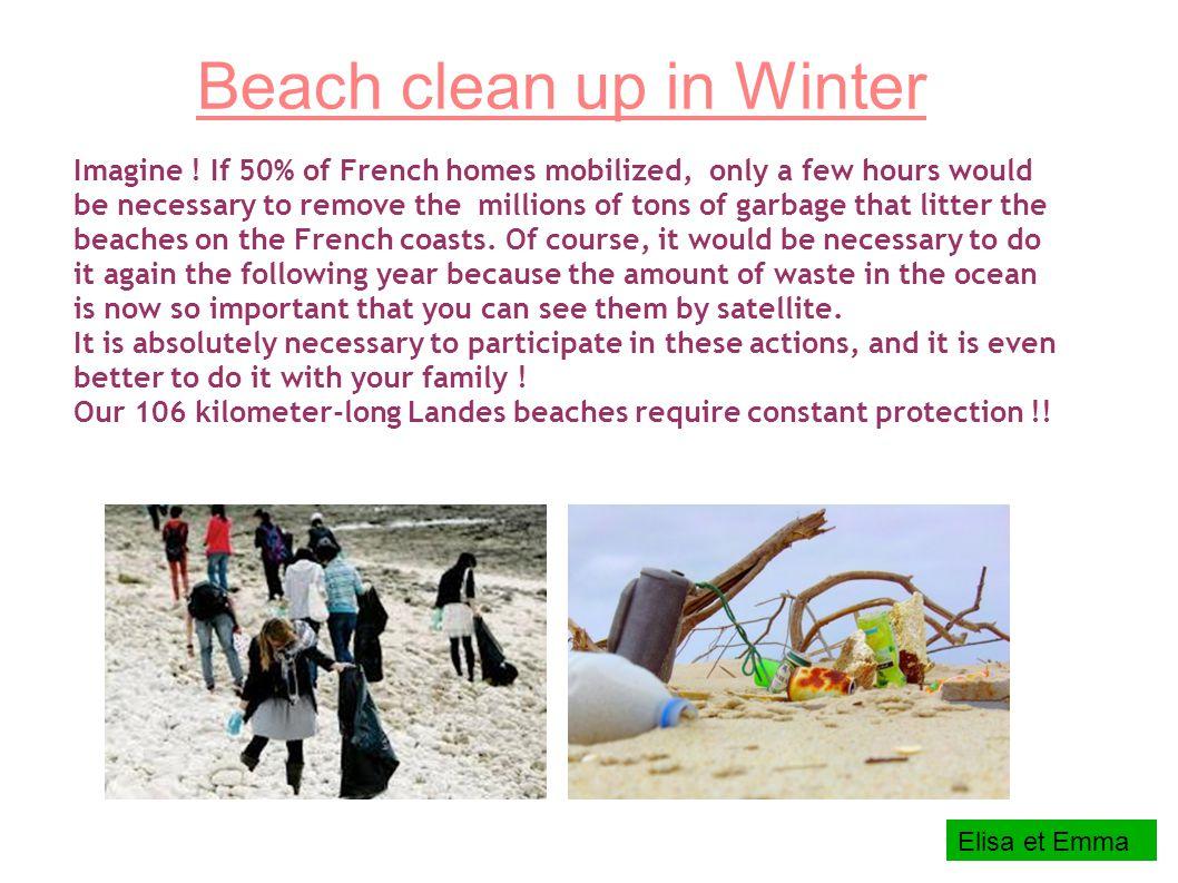 Beach clean up in Winter Imagine .