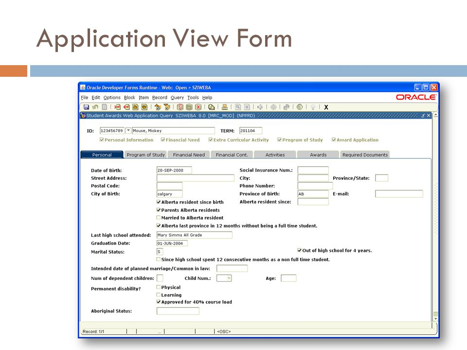 Application View Form