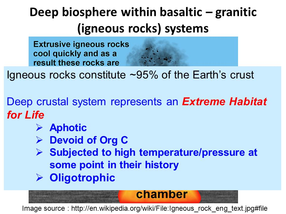 Deep biosphere within basaltic – granitic (igneous rocks) systems Basalt Granite Image source : http://en.wikipedia.org/wiki/File:Igneous_rock_eng_tex