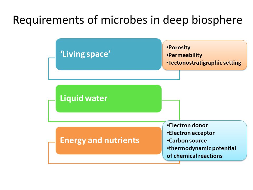 Requirements of microbes in deep biosphere 'Living space' Liquid waterEnergy and nutrients Electron donor Electron acceptor Carbon source thermodynami