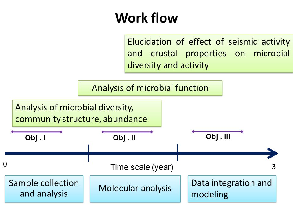 Work flow Sample collection and analysis Analysis of microbial diversity, community structure, abundance Analysis of microbial function Elucidation of