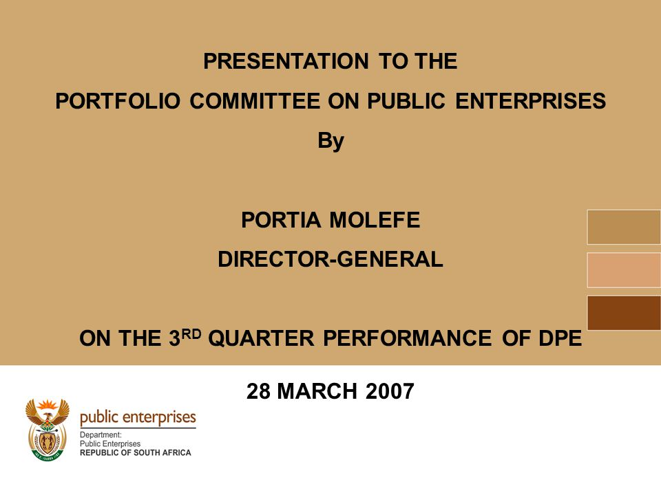 PRESENTATION TO THE PORTFOLIO COMMITTEE ON PUBLIC ENTERPRISES By PORTIA MOLEFE DIRECTOR-GENERAL ON THE 3 RD QUARTER PERFORMANCE OF DPE 28 MARCH 2007