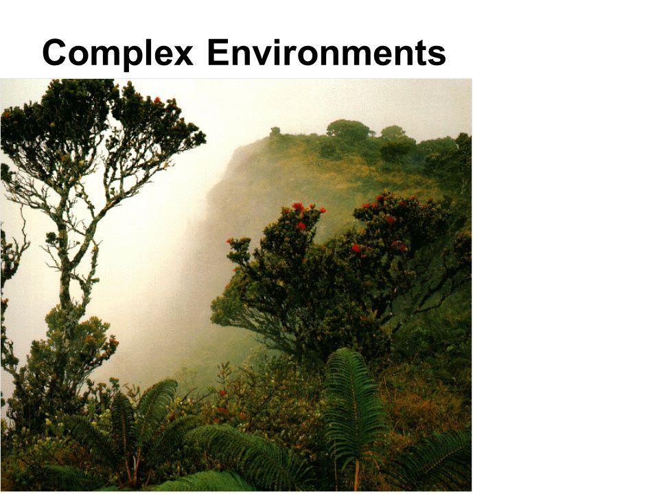 Complex Environments