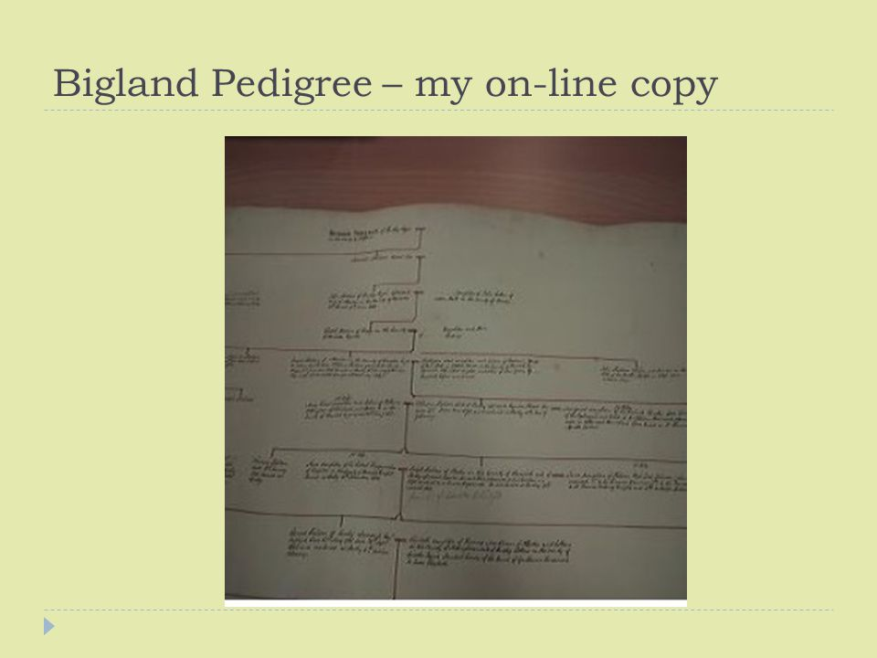 Bigland Pedigree – my on-line copy