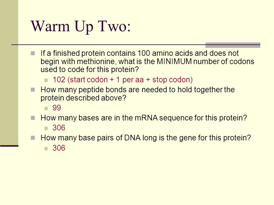 Warm Up Two: If a finished protein contains 100 amino acids and does not begin with methionine, what is the MINIMUM number of codons used to code for