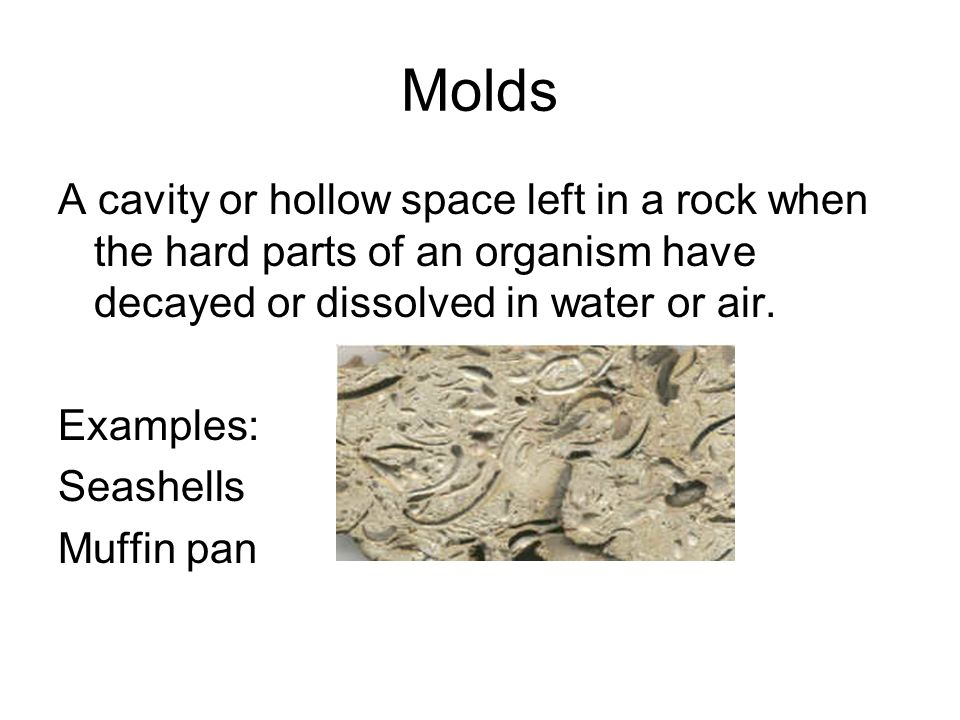 Molds A cavity or hollow space left in a rock when the hard parts of an organism have decayed or dissolved in water or air.