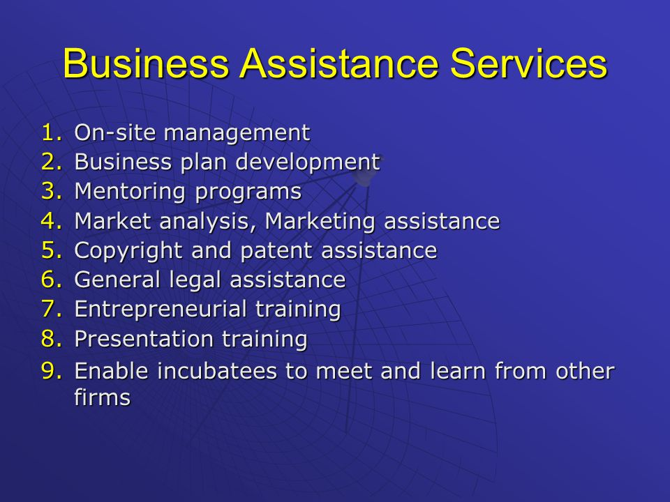 Business Assistance Services 1. On-site management 2.
