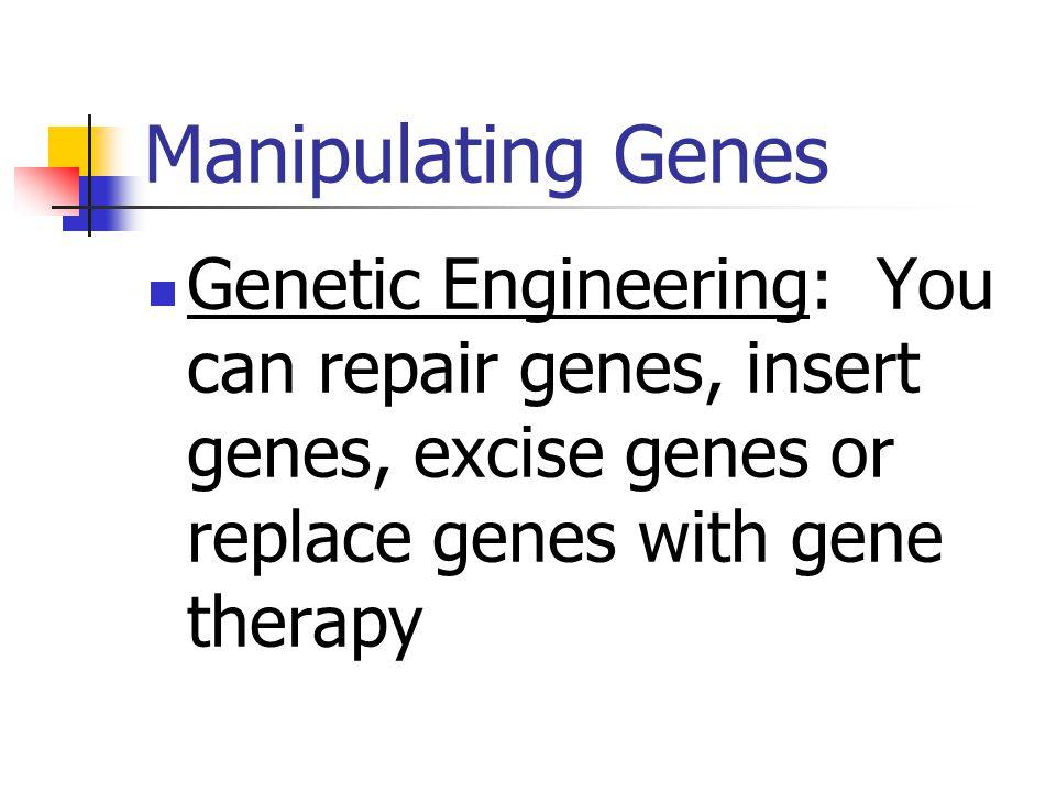 DNA Techniques Lab Preparation 13-1