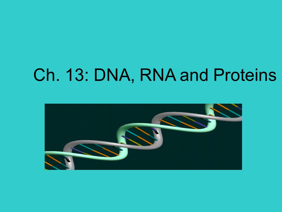 12-1: The Structure of DNA  What is genetic material composed of.