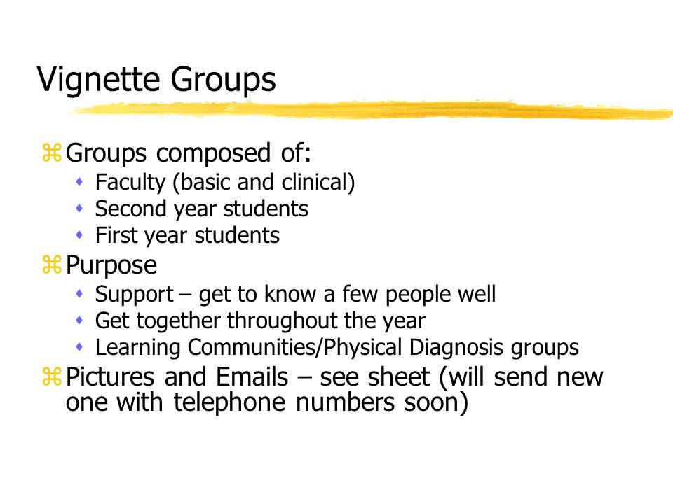 Vignette Groups zGroups composed of: sFaculty (basic and clinical) sSecond year students sFirst year students zPurpose sSupport – get to know a few people well sGet together throughout the year sLearning Communities/Physical Diagnosis groups zPictures and Emails – see sheet (will send new one with telephone numbers soon)