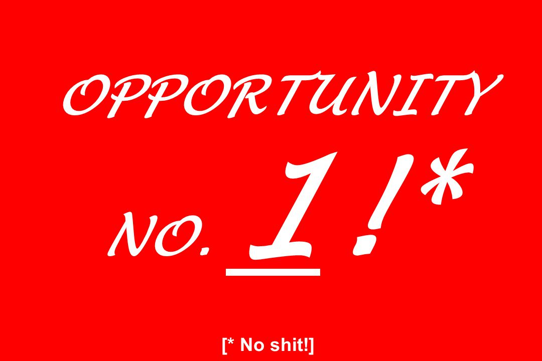 OPPORTUNITY NO. 1! * [* No shit!]