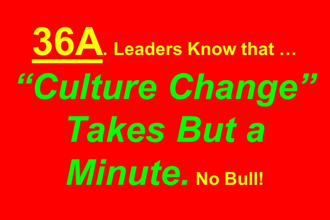 36A. Leaders Know that … Culture Change Takes But a Minute. No Bull!