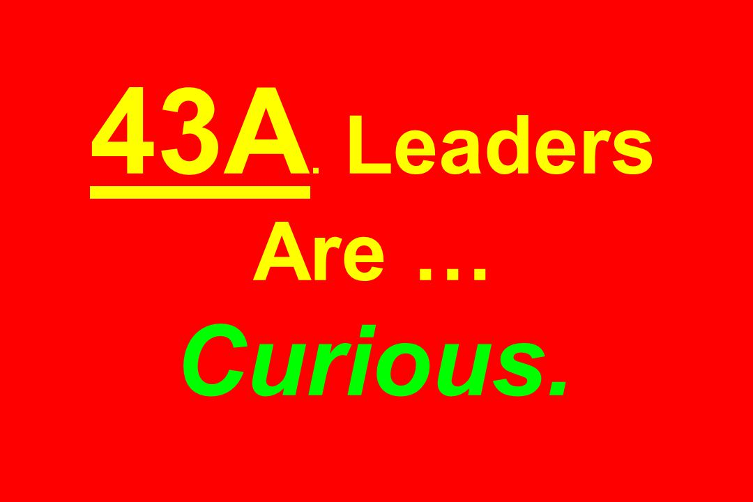 43A. Leaders Are … Curious.