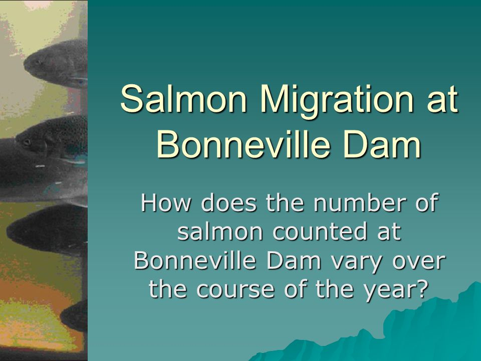 Salmon Migration at Bonneville Dam How does the number of salmon counted at Bonneville Dam vary over the course of the year