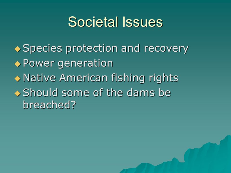 Societal Issues  Species protection and recovery  Power generation  Native American fishing rights  Should some of the dams be breached