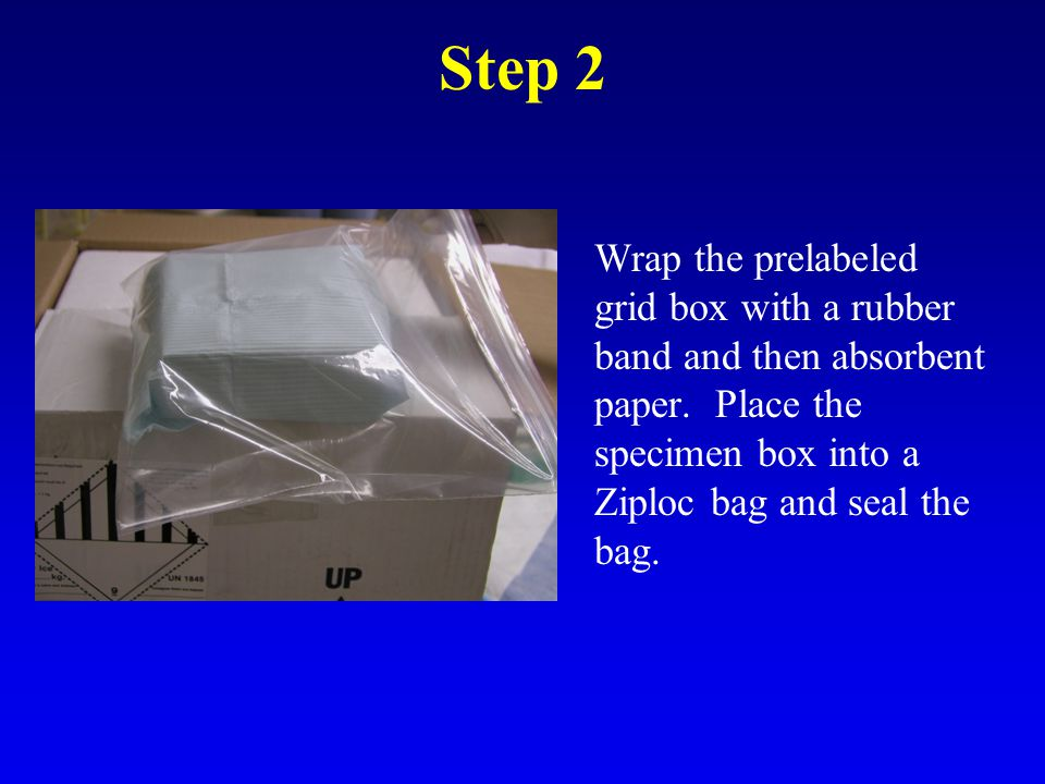 Step 3 Place the Ziploc bag into the bottom of the shipping box.