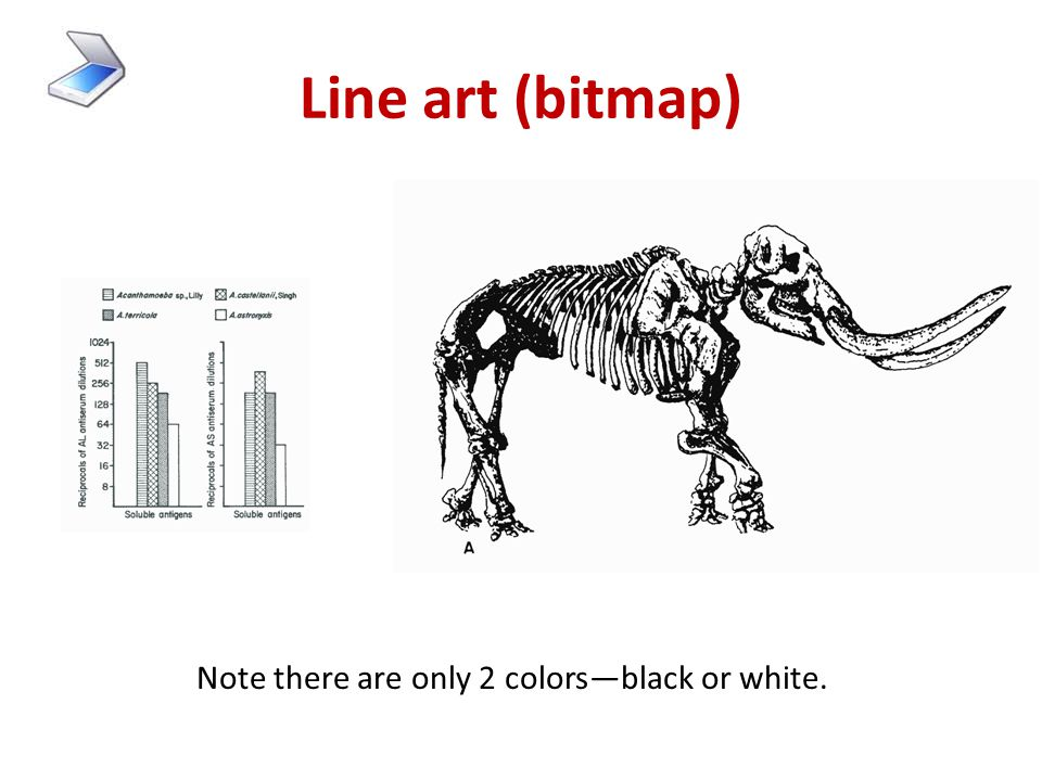"""3. Types of scans 1.Line art or bitmap or black & white = each """"dot"""" is either 100% black or 100% white 2.Grayscale = each dot is one of 256 shades of"""