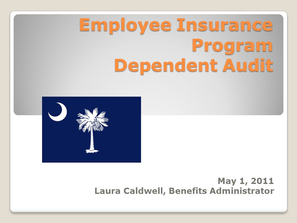 Employee Insurance Program Dependent Audit May 1, 2011 Laura Caldwell, Benefits Administrator
