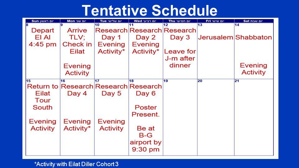 Tentative Schedule *Activity with Eilat Diller Cohort 3