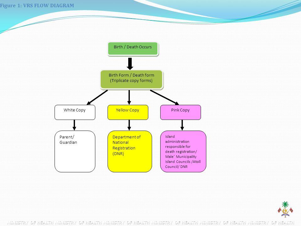 Figure 1: VRS FLOW DIAGRAM Birth / Death Occurs Birth Form / Death form (Triplicate copy forms) White CopyYellow CopyPink Copy Parent/ Guardian Depart