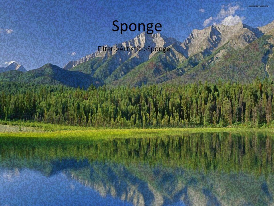 Sponge Filter->Artistic->Sponge