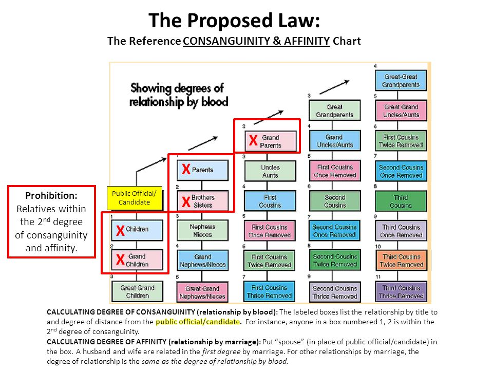 The Proposed Law: The Reference CONSANGUINITY & AFFINITY Chart Public Official/ Candidate X X X X X Prohibition: Relatives within the 2 nd degree of consanguinity and affinity.