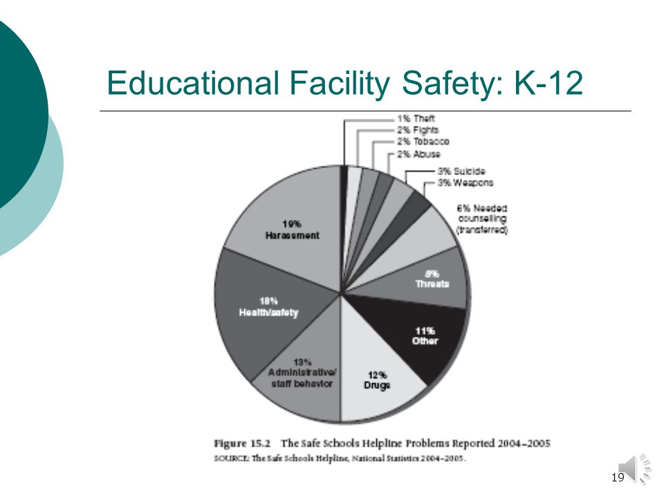 18 Educational Facility Safety: K-12  Security needs vary depending on the size of the school  Vandalism is a serious problem for most schools.