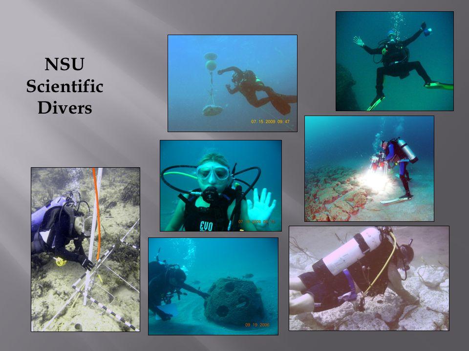 NSU Scientific Divers
