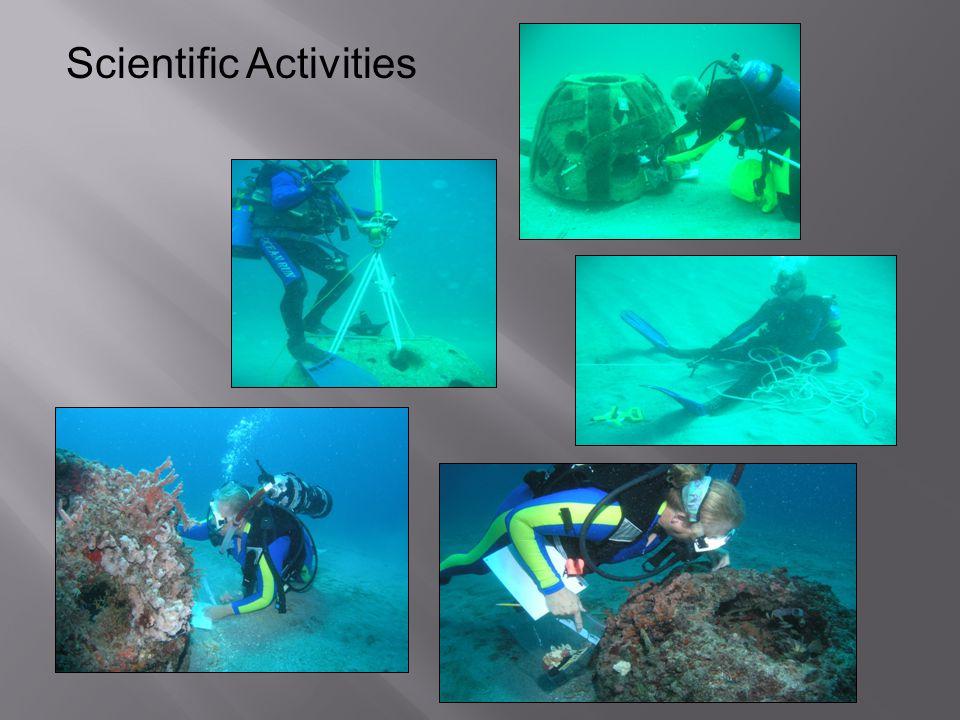 Scientific Activities