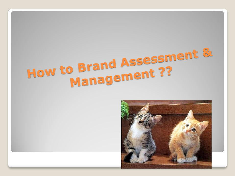 How to Brand Assessment & Management