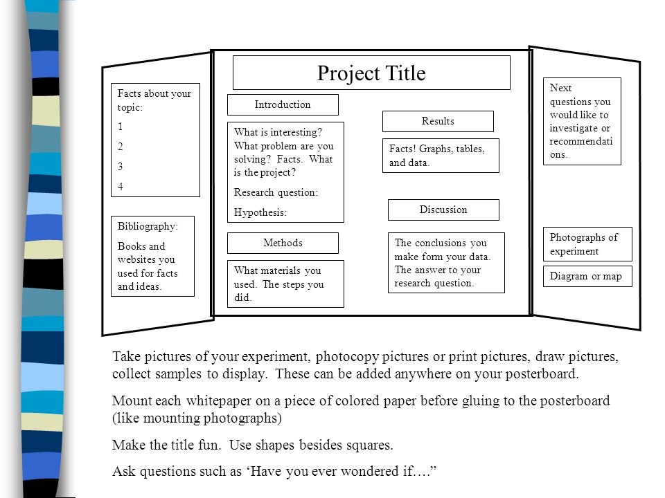 Project Title Introduction What is interesting? What problem are you solving? Facts. What is the project? Research question: Hypothesis: Methods What