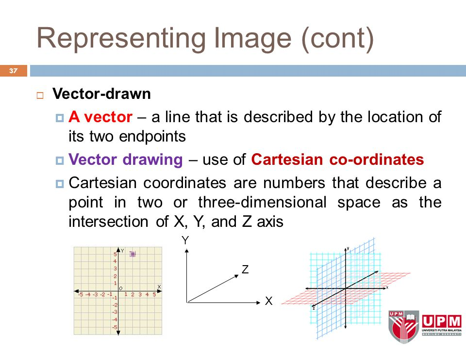 Representing Image (cont)  Vector-drawn  A vector – a line that is described by the location of its two endpoints  Vector drawing – use of Cartesian co-ordinates  Cartesian coordinates are numbers that describe a point in two or three-dimensional space as the intersection of X, Y, and Z axis 37 X Y Z