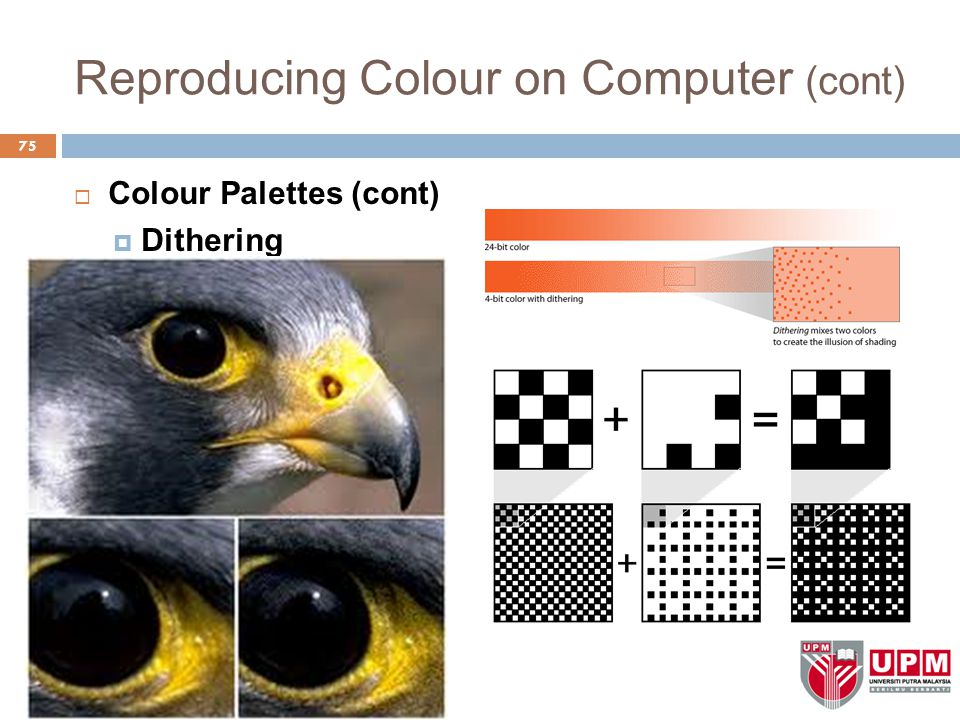 Reproducing Colour on Computer (cont)  Colour Palettes (cont)  Dithering 75