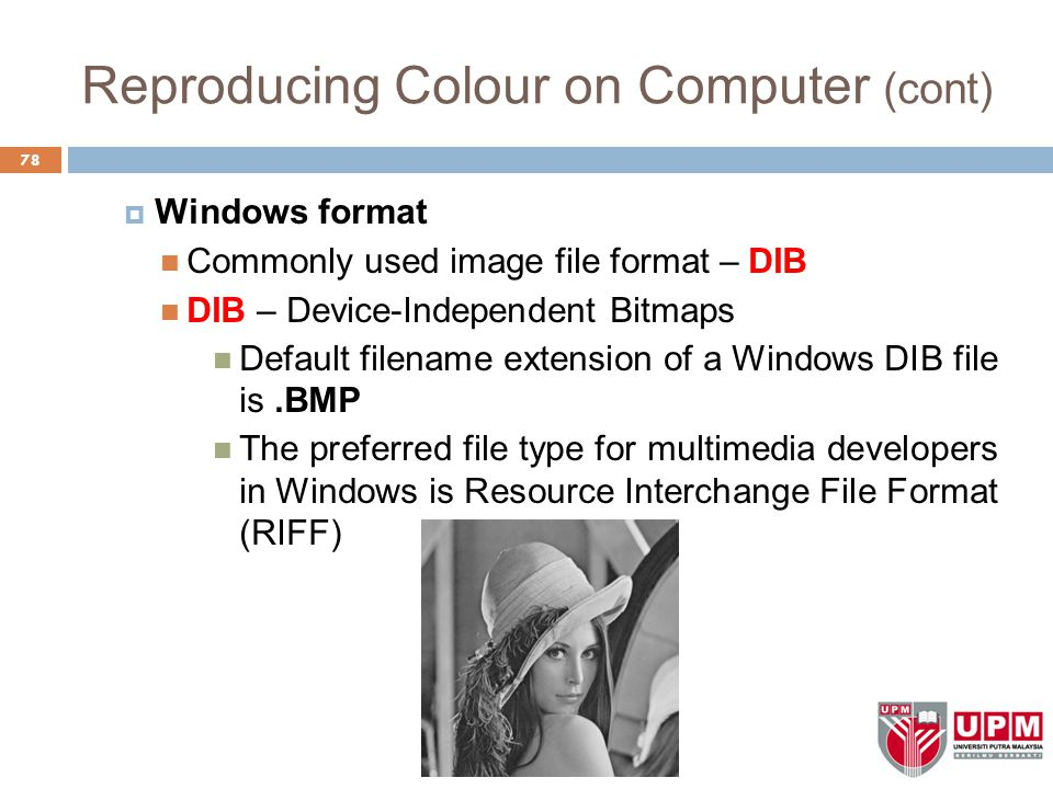 Reproducing Colour on Computer (cont)  Windows format Commonly used image file format – DIB DIB – Device-Independent Bitmaps Default filename extension of a Windows DIB file is.BMP The preferred file type for multimedia developers in Windows is Resource Interchange File Format (RIFF) 78