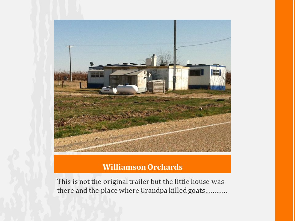 Williamson Orchards This is not the original trailer but the little house was there and the place where Grandpa killed goats…………