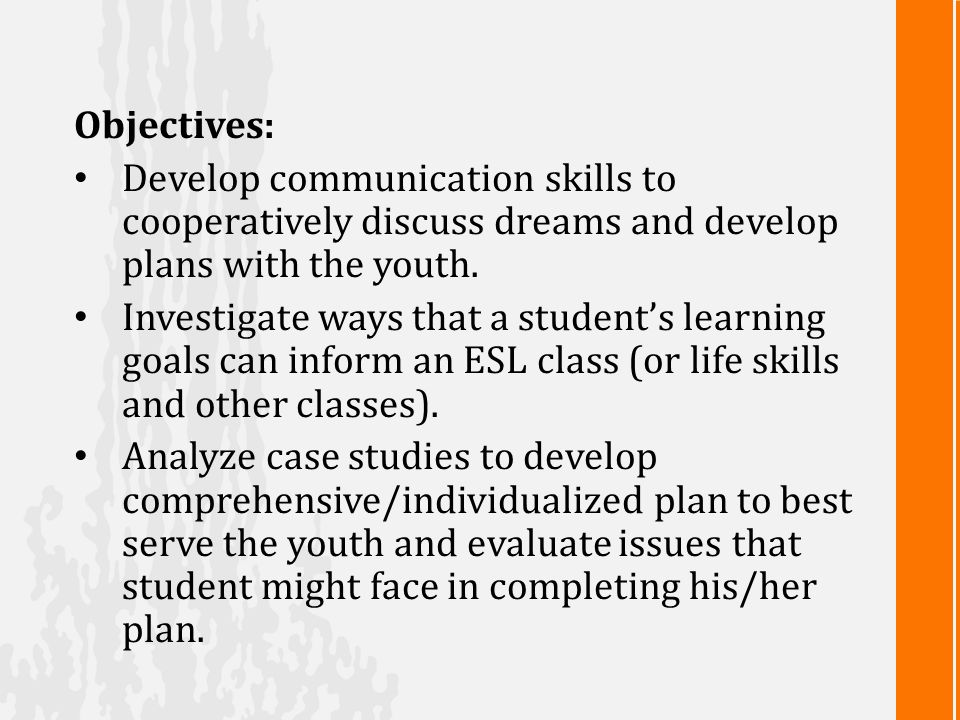 Objectives: Develop communication skills to cooperatively discuss dreams and develop plans with the youth.
