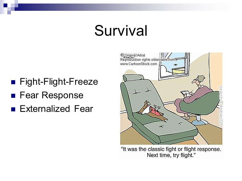 Survival Fight-Flight-Freeze Fear Response Externalized Fear