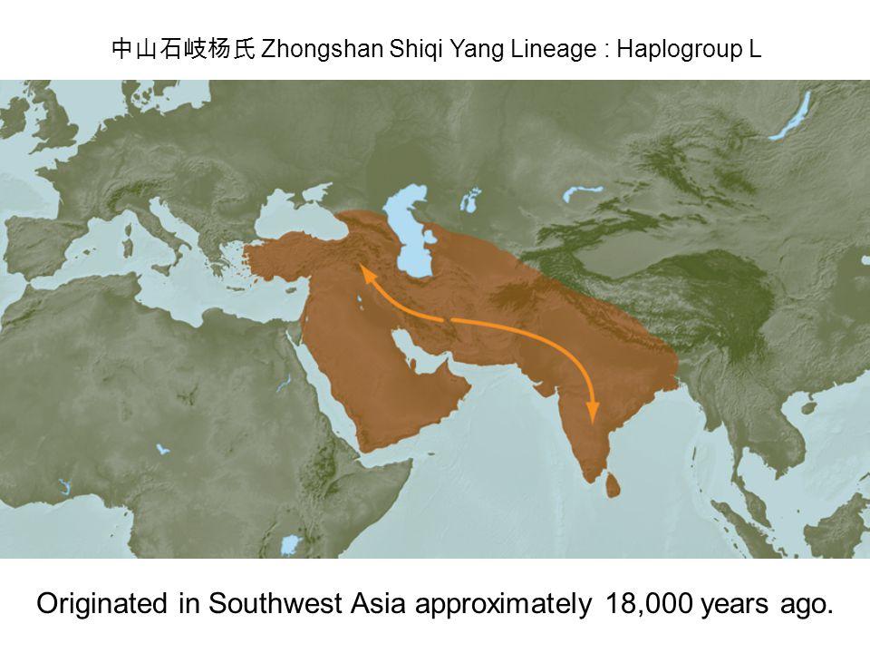 中山石岐杨氏 Zhongshan Shiqi Yang Lineage : Haplogroup L Originated in Southwest Asia approximately 18,000 years ago.