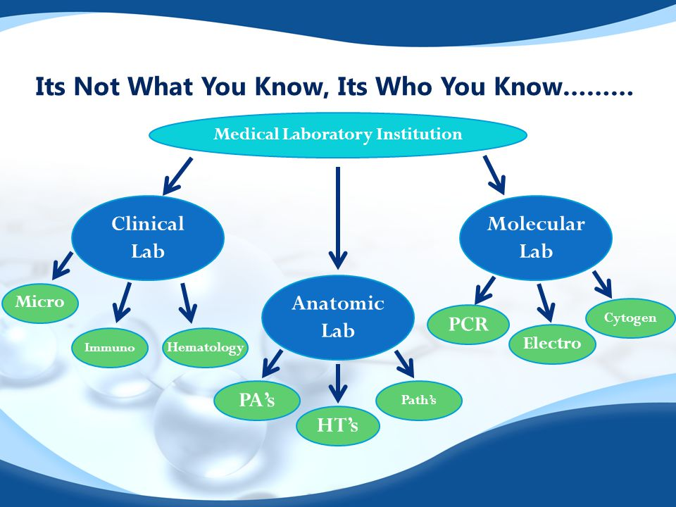 Its Not What You Know, Its Who You Know……… Anatomic Lab Clinical Lab Molecular Lab Medical Laboratory Institution HT's PA's Path's Electro PCR Cytogen Immuno Micro Hematology