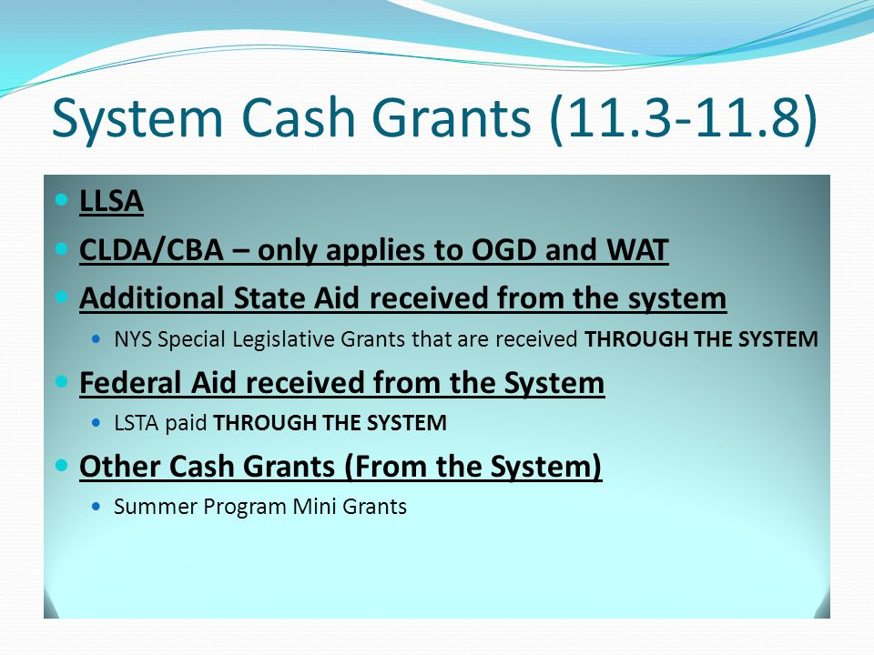 System Cash Grants (11.3-11.8) LLSA CLDA/CBA – only applies to OGD and WAT Additional State Aid received from the system NYS Special Legislative Grants that are received THROUGH THE SYSTEM Federal Aid received from the System LSTA paid THROUGH THE SYSTEM Other Cash Grants (From the System) Summer Program Mini Grants